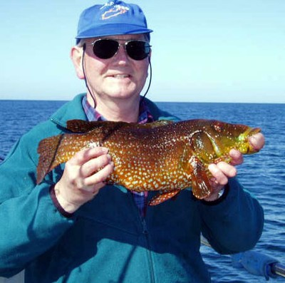 The kind of fish (and angler) we studiously refrain from mentioning in the newsletter. This is our old ballan record of 4lb 6oz.